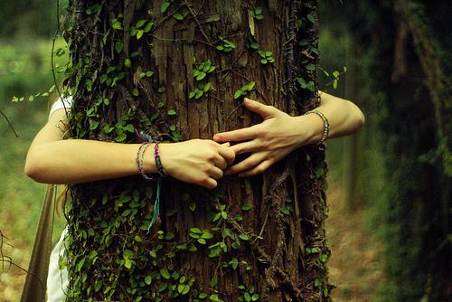 tree-hugger